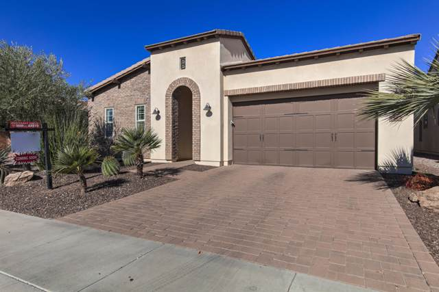 1572 E Vesper Trail, San Tan Valley, AZ 85140 (MLS #6025894) :: My Home Group
