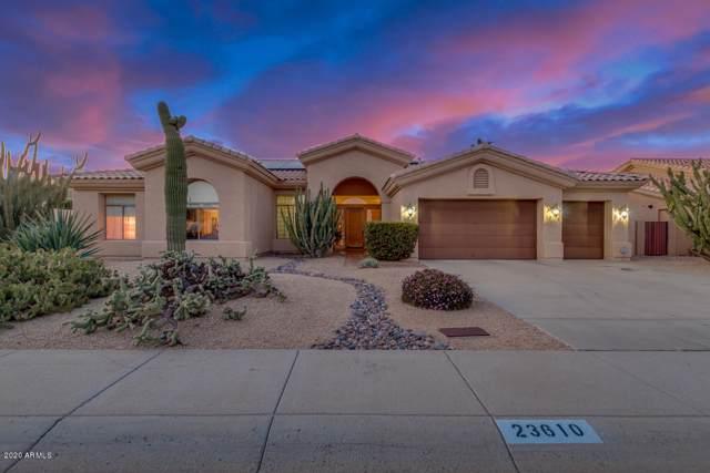 23610 N 55TH Drive, Glendale, AZ 85310 (MLS #6025970) :: Nate Martinez Team