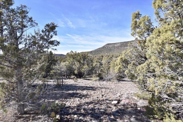 1177 Serenity Trail, Seligman, AZ 86337 (MLS #6025982) :: Klaus Team Real Estate Solutions