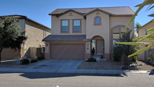 797 W Desert Basin Drive, San Tan Valley, AZ 85143 (MLS #6026002) :: My Home Group