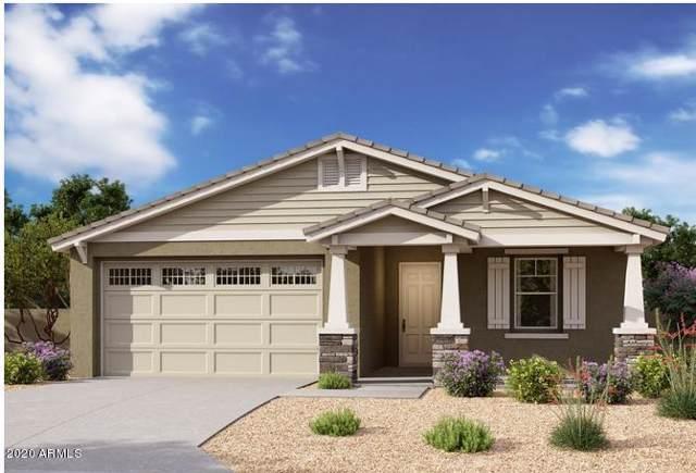 22754 E Domingo Road, Queen Creek, AZ 85142 (MLS #6026030) :: Scott Gaertner Group