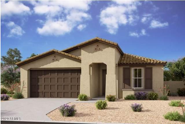 22699 E Rosa Road, Queen Creek, AZ 85142 (MLS #6026037) :: Lux Home Group at  Keller Williams Realty Phoenix