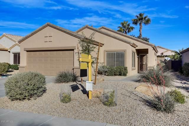 15774 W Arrowhead Drive, Surprise, AZ 85374 (MLS #6026043) :: Team Wilson Real Estate