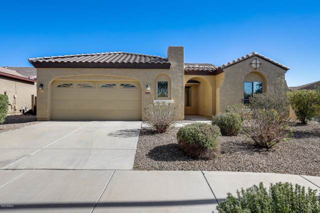 11339 N 161ST Avenue, Surprise, AZ 85379 (MLS #6026075) :: The Property Partners at eXp Realty