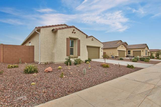 18480 W College Drive, Goodyear, AZ 85395 (MLS #6026084) :: Keller Williams Realty Phoenix
