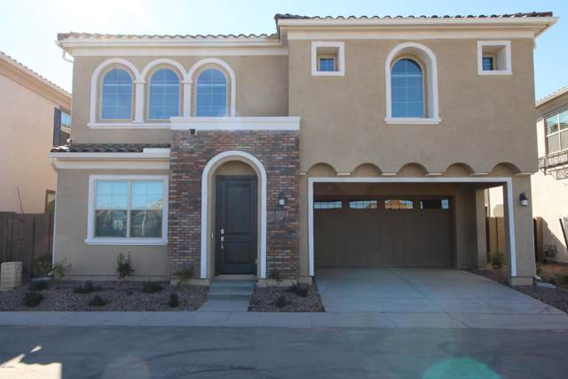 1157 E Chapman Drive, Chandler, AZ 85286 (MLS #6026109) :: My Home Group