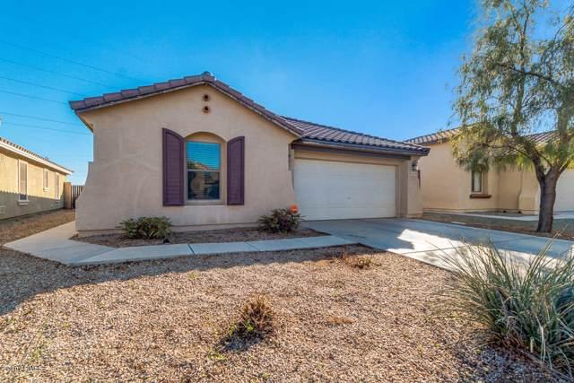 18343 N Celis Street, Maricopa, AZ 85138 (MLS #6026122) :: Keller Williams Realty Phoenix