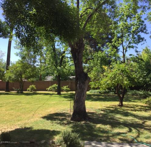 205 E Griswold Road, Phoenix, AZ 85020 (MLS #6026130) :: Revelation Real Estate