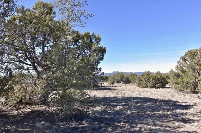 729 Kokapelli Road, Seligman, AZ 86337 (MLS #6026198) :: Brett Tanner Home Selling Team