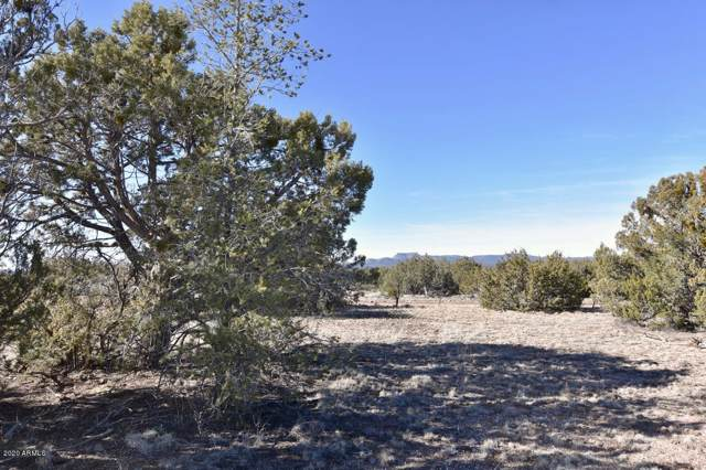 729 Kokapelli Road, Seligman, AZ 86337 (#6026198) :: AZ Power Team | RE/MAX Results