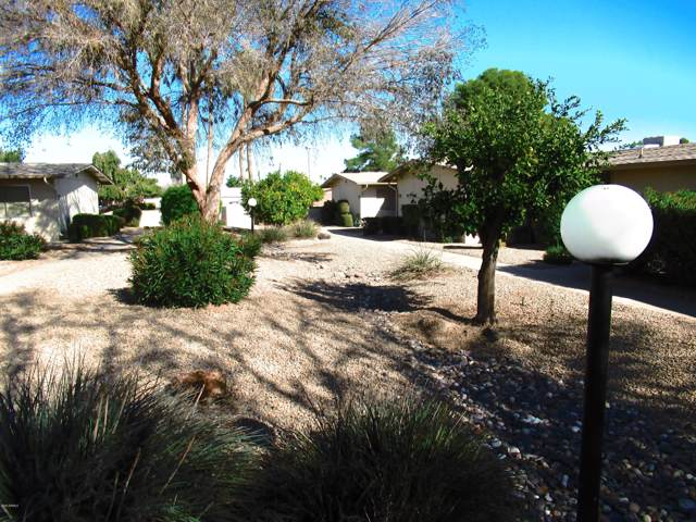 13329 W Copperstone Drive, Sun City West, AZ 85375 (MLS #6026303) :: Devor Real Estate Associates