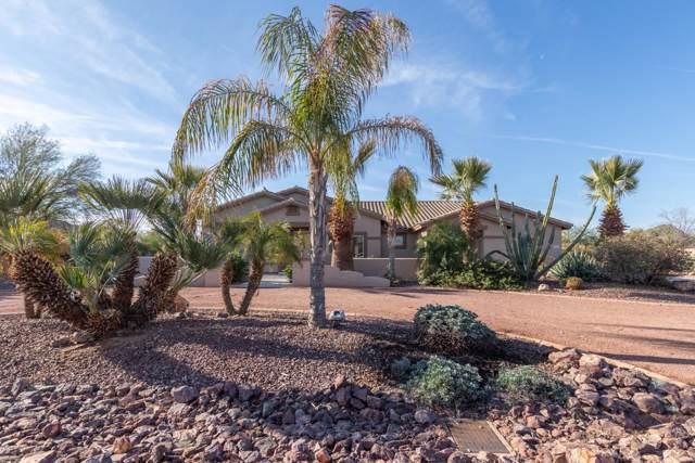 3616 N Brindley Avenue, Litchfield Park, AZ 85340 (MLS #6026309) :: Devor Real Estate Associates