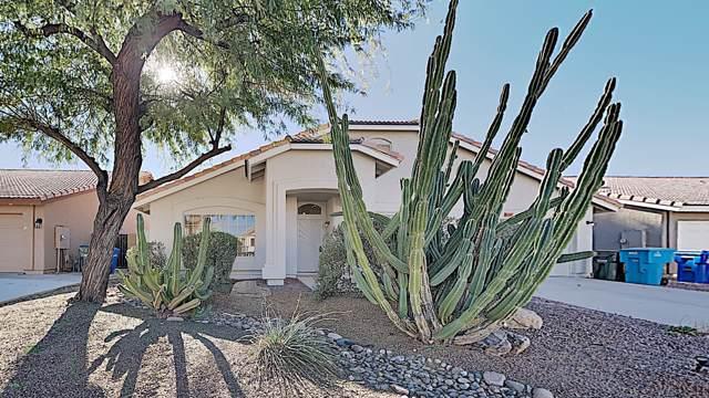 4407 E Danbury Road, Phoenix, AZ 85032 (MLS #6026434) :: Team Wilson Real Estate