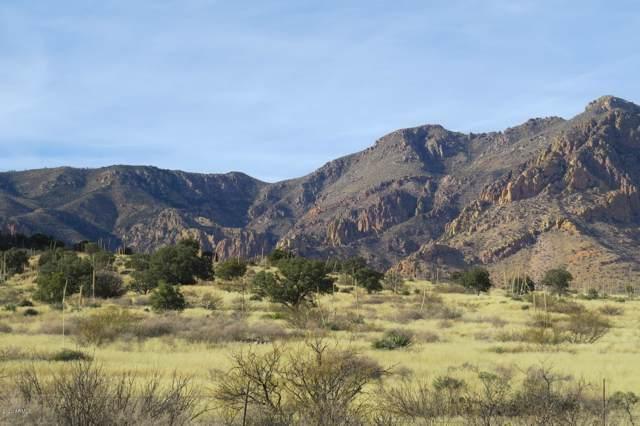 100 E Sulpher Canyon Road, Portal, AZ 85632 (MLS #6026542) :: Yost Realty Group at RE/MAX Casa Grande