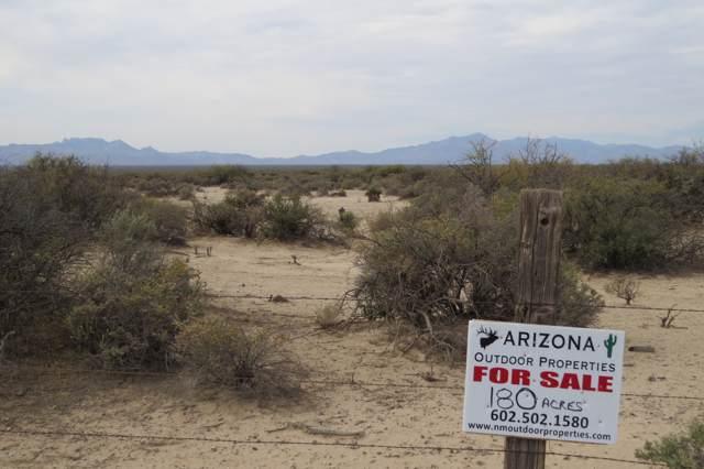 100 E Parker Road, San Simon, AZ 85632 (MLS #6026546) :: Arizona Home Group