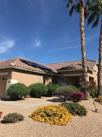 3709 N 128TH Avenue N, Avondale, AZ 85392 (MLS #6026604) :: Team Wilson Real Estate