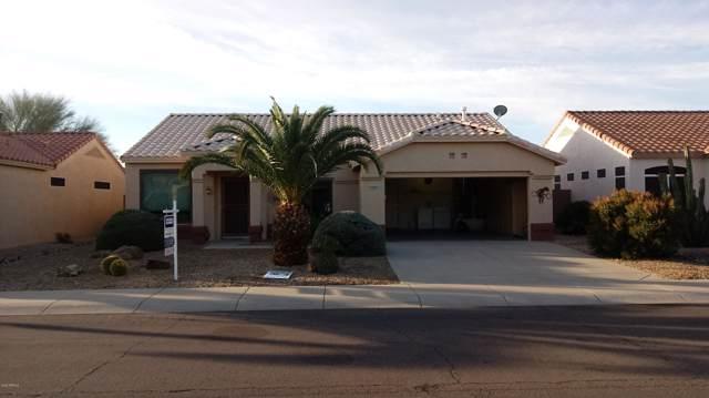 14209 W Territorial Lane, Sun City West, AZ 85375 (MLS #6026612) :: Scott Gaertner Group