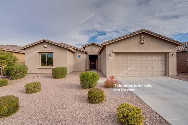 20011 N Pelican Lane, Maricopa, AZ 85138 (MLS #6026794) :: Power Realty Group Model Home Center