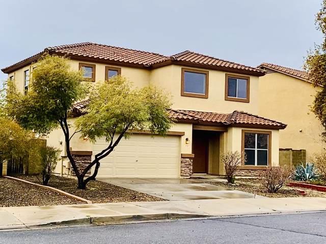1710 S 116TH Lane, Avondale, AZ 85323 (MLS #6026808) :: The Kenny Klaus Team