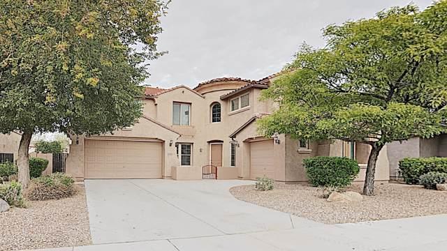 11130 E Risata Avenue, Mesa, AZ 85212 (MLS #6026827) :: The Kenny Klaus Team