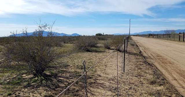461XX W Trotter Road, Wickenburg, AZ 85390 (MLS #6026859) :: The Property Partners at eXp Realty