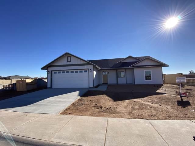 485 W Pennant Lane, Taylor, AZ 85939 (MLS #6027071) :: Arizona Home Group