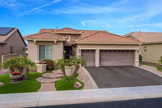 15580 W Ranoke Avenue, Goodyear, AZ 85395 (MLS #6027078) :: The Bill and Cindy Flowers Team