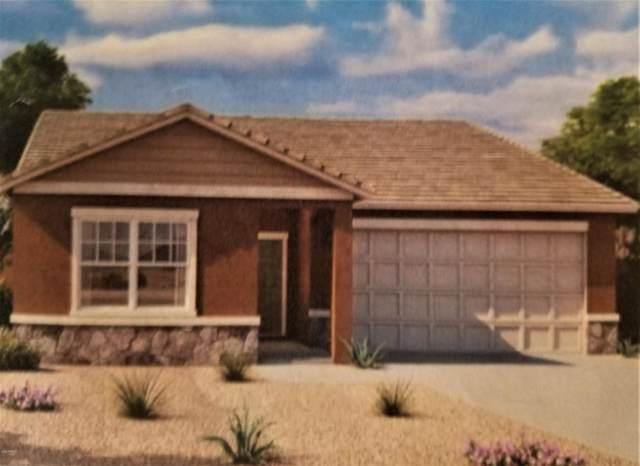33586 N Draba Lane, San Tan Valley, AZ 85142 (MLS #6027162) :: Power Realty Group Model Home Center