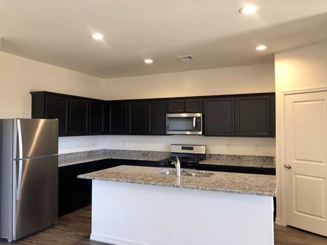 304 W White Sands Drive, San Tan Valley, AZ 85140 (MLS #6027191) :: Power Realty Group Model Home Center