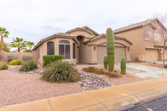 43844 W Wade Drive, Maricopa, AZ 85138 (MLS #6027268) :: Power Realty Group Model Home Center