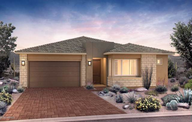 2826 E Crest Lane, Phoenix, AZ 85050 (MLS #6027271) :: Brett Tanner Home Selling Team