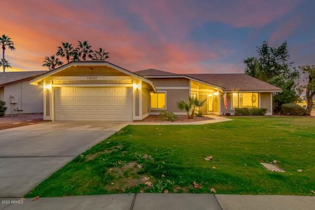 1630 W Calle Del Norte, Chandler, AZ 85224 (MLS #6027279) :: Power Realty Group Model Home Center