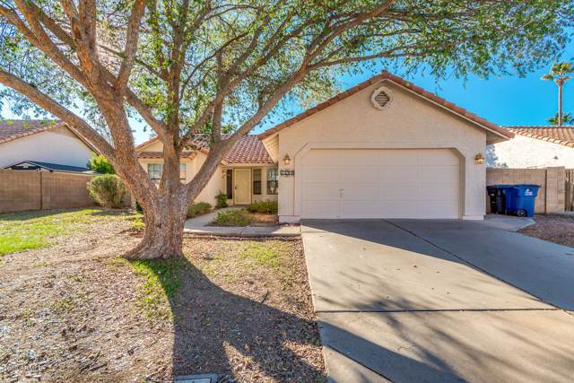 1141 E Encinas Avenue, Gilbert, AZ 85234 (MLS #6027354) :: My Home Group