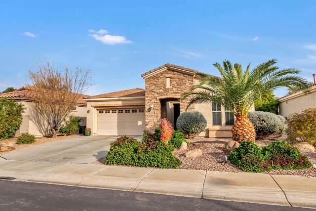 4242 E Carob Drive, Gilbert, AZ 85298 (MLS #6027421) :: Revelation Real Estate