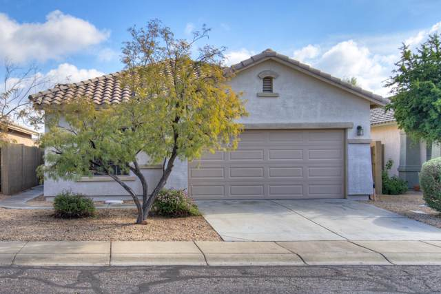 40247 N Acadia Court, Anthem, AZ 85086 (MLS #6027561) :: Riddle Realty Group - Keller Williams Arizona Realty
