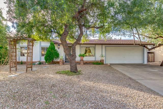 1535 W Kerry Lane, Phoenix, AZ 85027 (MLS #6027567) :: Revelation Real Estate
