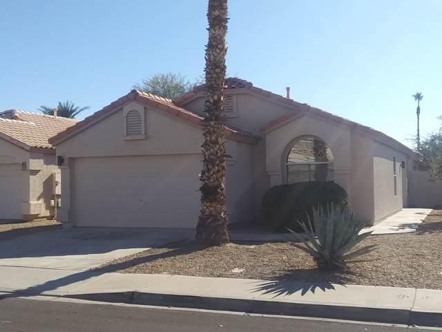 1081 W Lark Drive, Chandler, AZ 85286 (MLS #6027609) :: The W Group