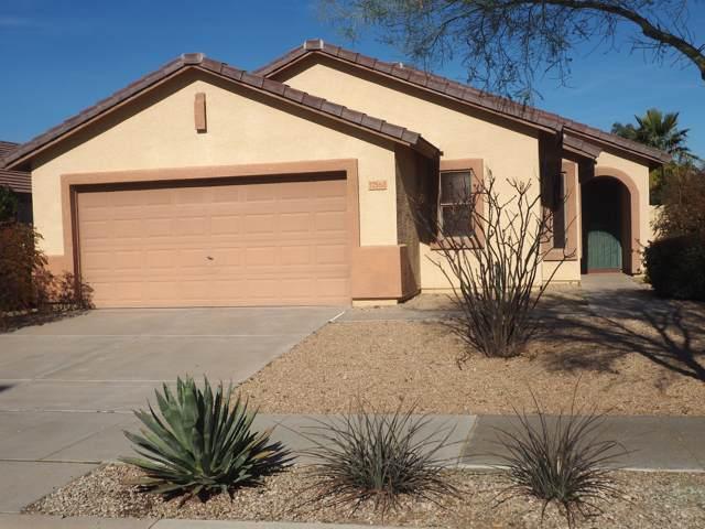 17562 W Dalea Drive, Goodyear, AZ 85338 (MLS #6027631) :: The Kenny Klaus Team
