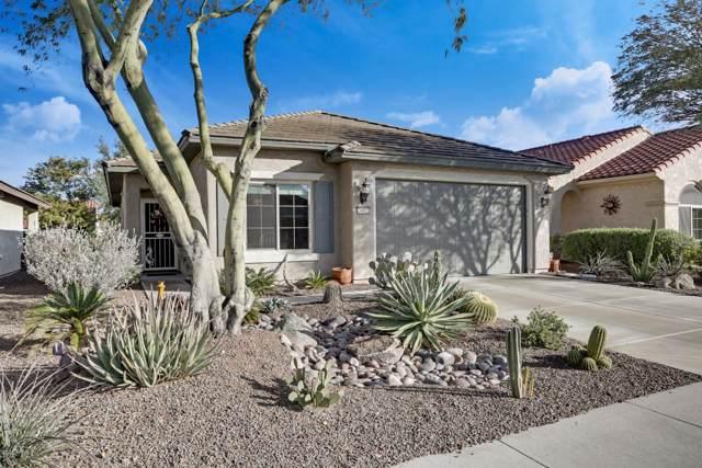 26822 W Mohawk Lane, Buckeye, AZ 85396 (MLS #6027633) :: Revelation Real Estate