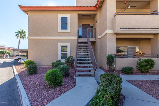 10410 N Cave Creek Road #1122, Phoenix, AZ 85020 (MLS #6027644) :: The Everest Team at eXp Realty