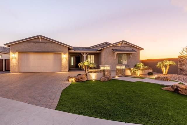 9743 W Desert Elm Lane, Peoria, AZ 85383 (MLS #6027692) :: The Helping Hands Team