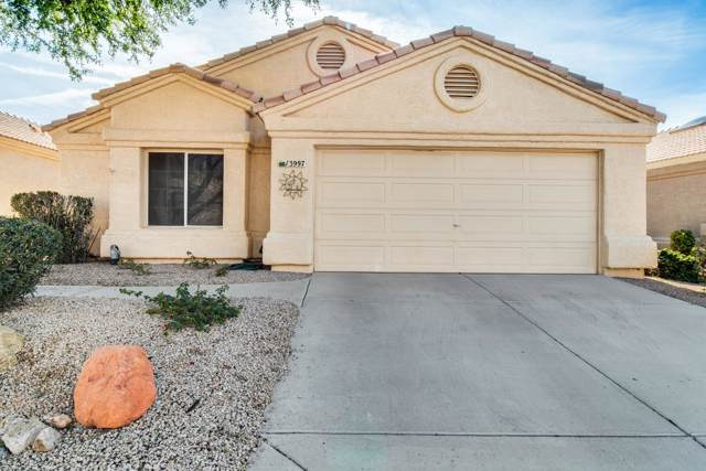 13997 W Pueblo Trail, Surprise, AZ 85374 (MLS #6027702) :: Team Wilson Real Estate
