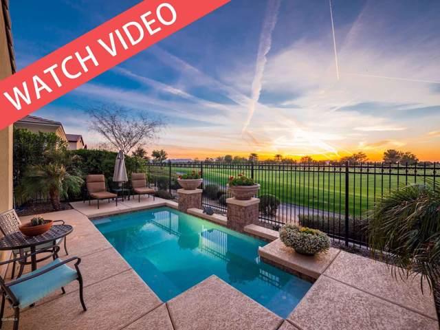 36714 N Crucillo Drive, Queen Creek, AZ 85140 (MLS #6027725) :: Relevate | Phoenix
