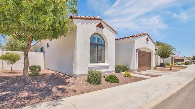 14200 W Village Parkway Parkway #2028, Litchfield Park, AZ 85340 (MLS #6027822) :: Brett Tanner Home Selling Team