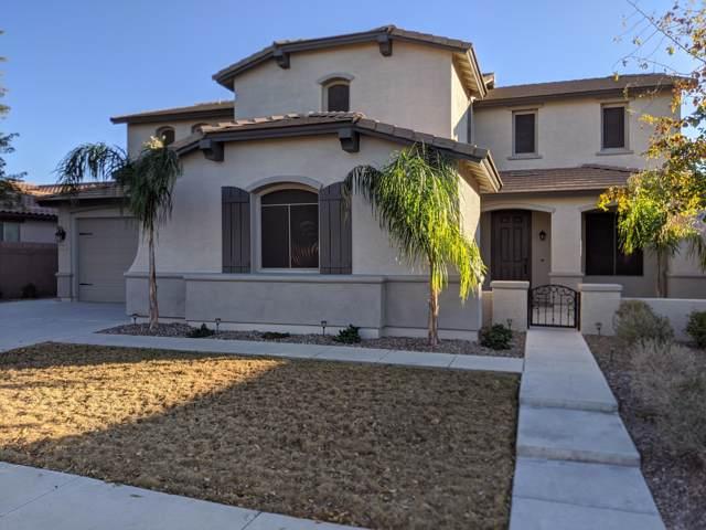 2577 E Donato Drive, Gilbert, AZ 85298 (MLS #6027828) :: Relevate | Phoenix