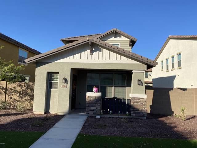 3344 W Hayduk Road, Laveen, AZ 85339 (MLS #6027881) :: The W Group