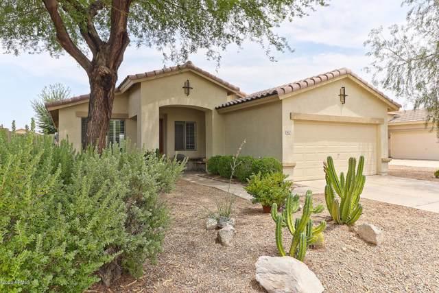 9911 S 183RD Lane, Goodyear, AZ 85338 (MLS #6027926) :: Santizo Realty Group