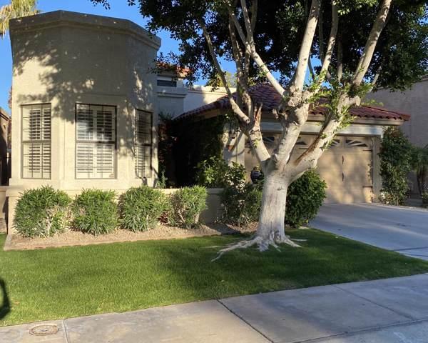 9481 N 106TH Place, Scottsdale, AZ 85258 (MLS #6027950) :: CC & Co. Real Estate Team
