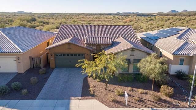 27608 N 102ND Lane, Peoria, AZ 85383 (MLS #6027994) :: Selling AZ Homes Team