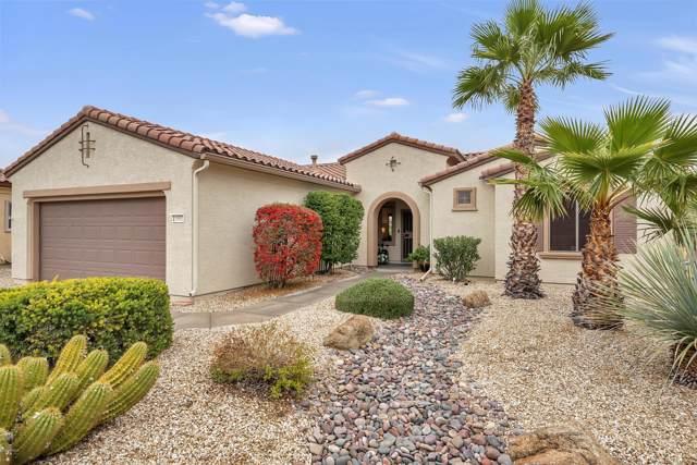 21587 N Casa Royale Drive, Surprise, AZ 85387 (MLS #6028017) :: RE/MAX Desert Showcase